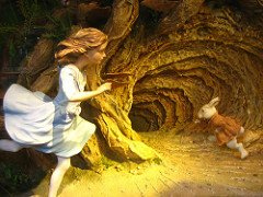Don't get lost down a rabbit hole